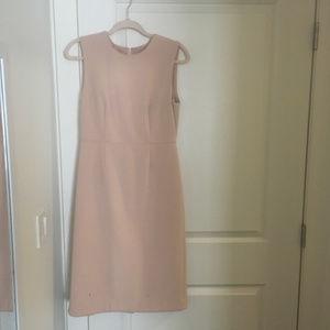 Ann Taylor Work Dress Blush Color
